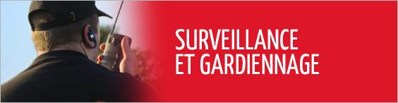 surveillance-gardiennage-alsace-securite